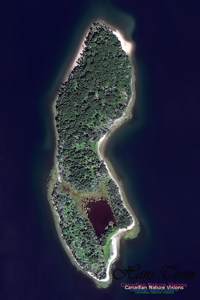 Troop Island Aerial Photo