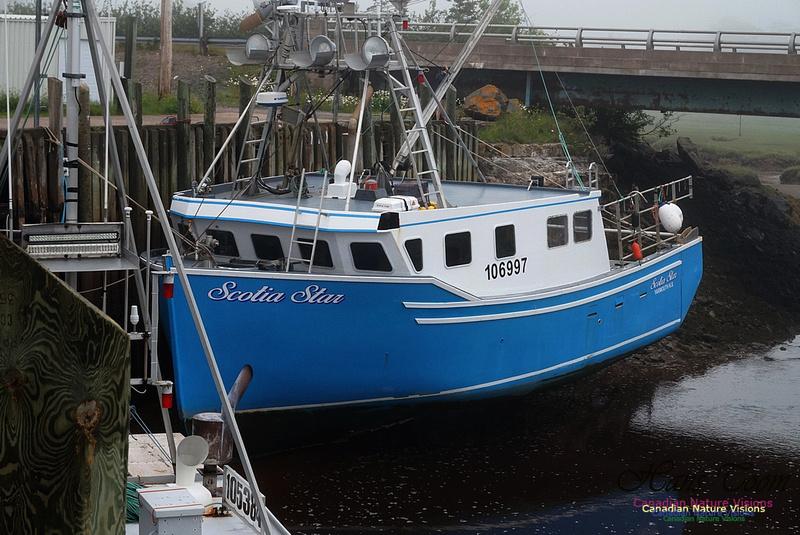 Lobster Boat 101