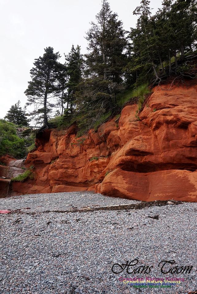 Red Rocks 100