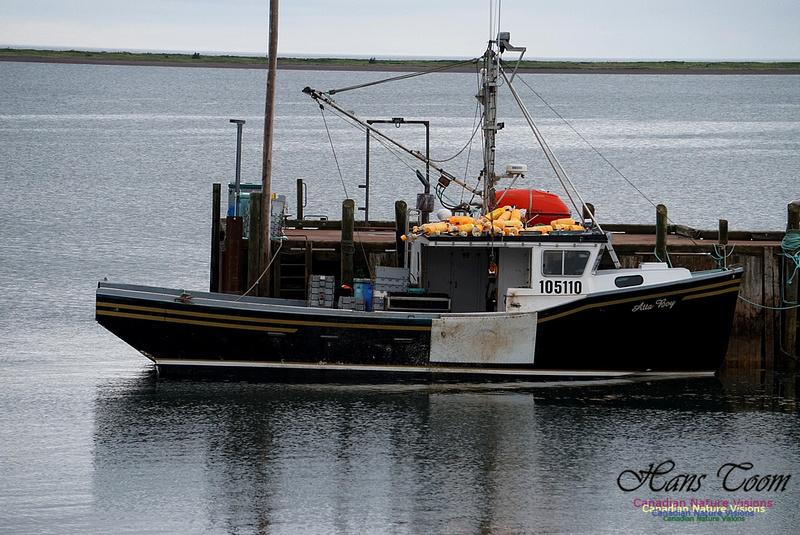 Lobster Boat Advocate Dock High Tide 100