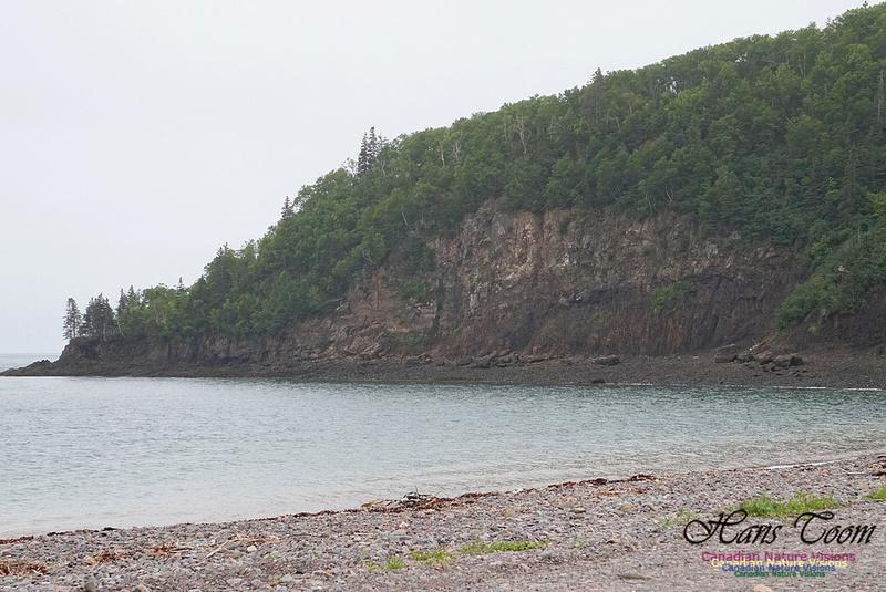 Partridge Island 101