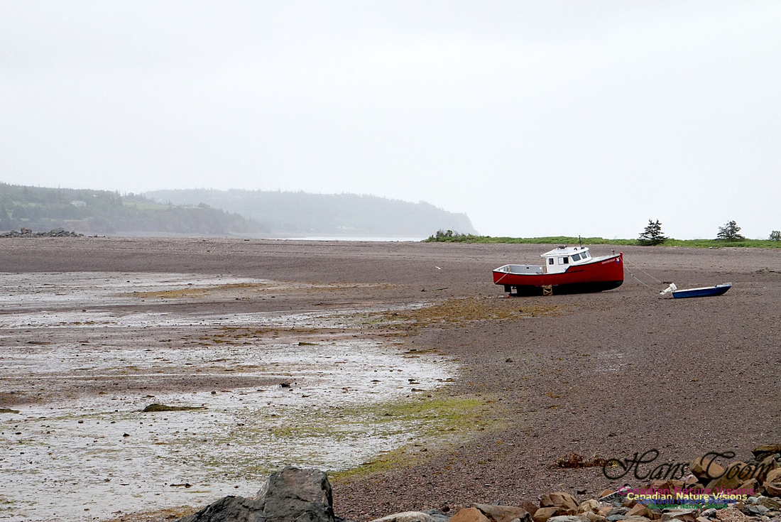 Red Boat on Gravel Bar 100