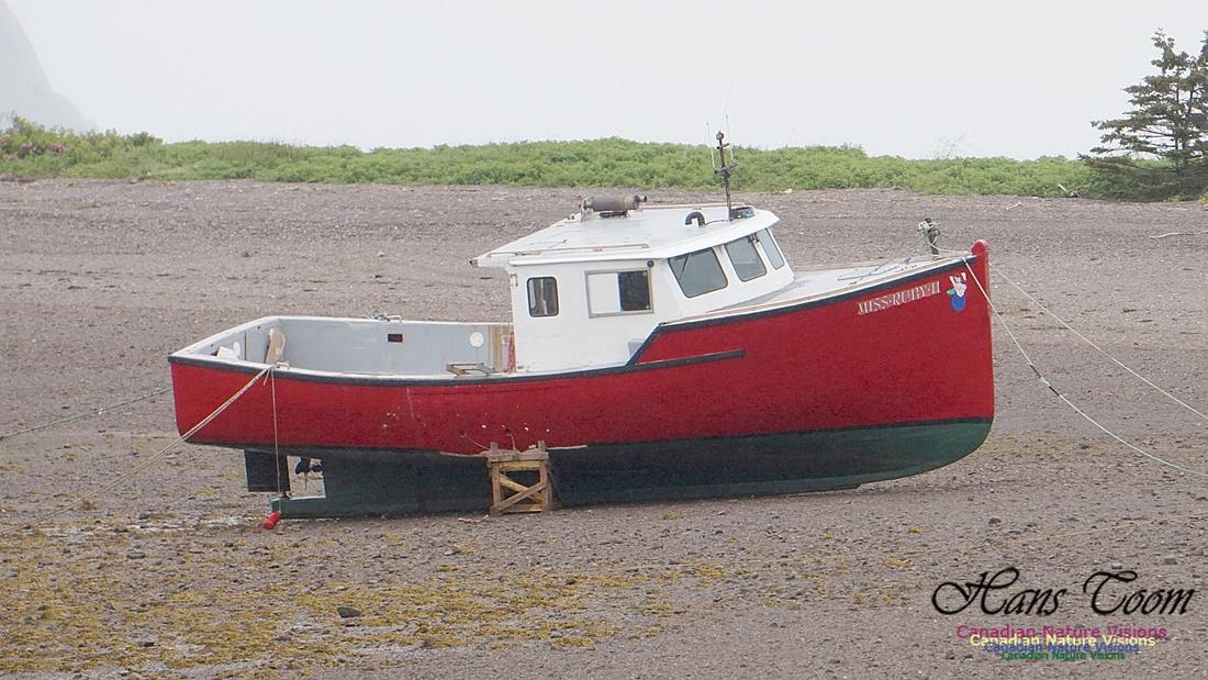 Red Boat on Gravel Bar 101