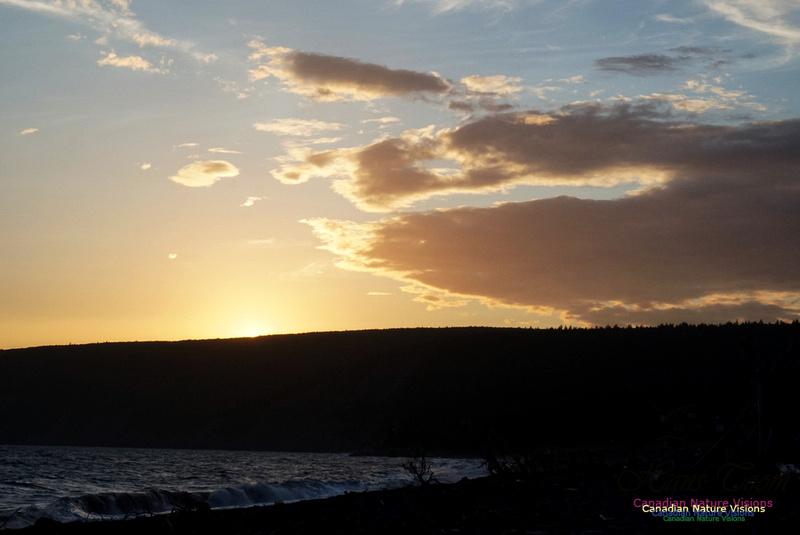 Sunset 102