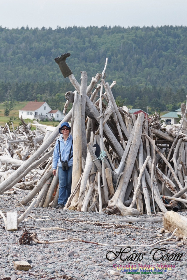 Laura and wood Pile 101
