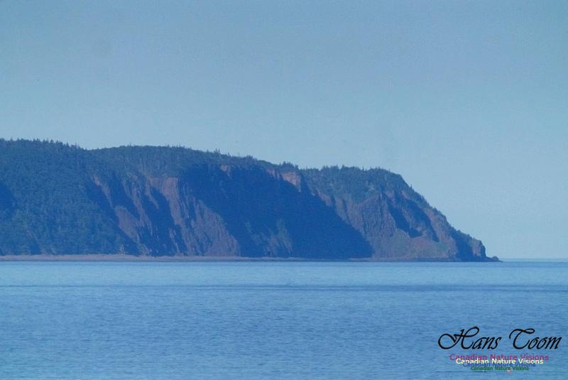 Isle Haute 101