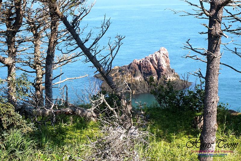 Three Sisters Trail 118