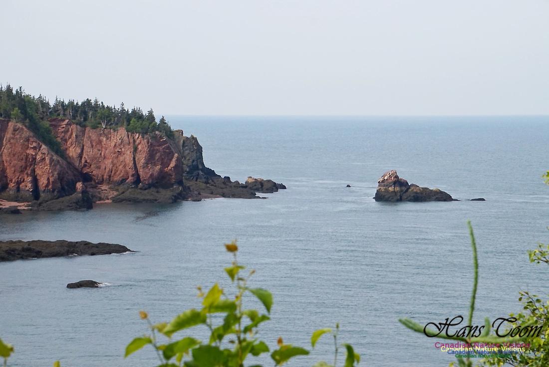 Anderson's Cove 101