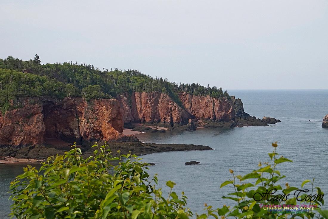Anderson's Cove 105