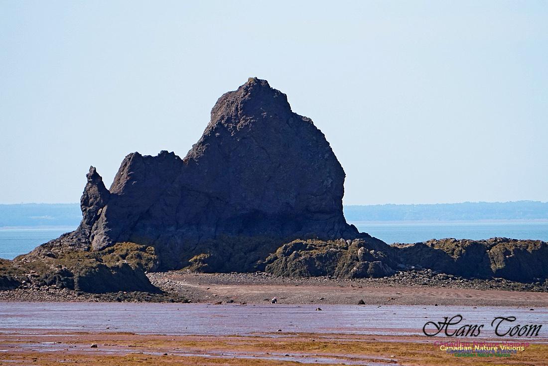 Five Islands Provincial Park 106