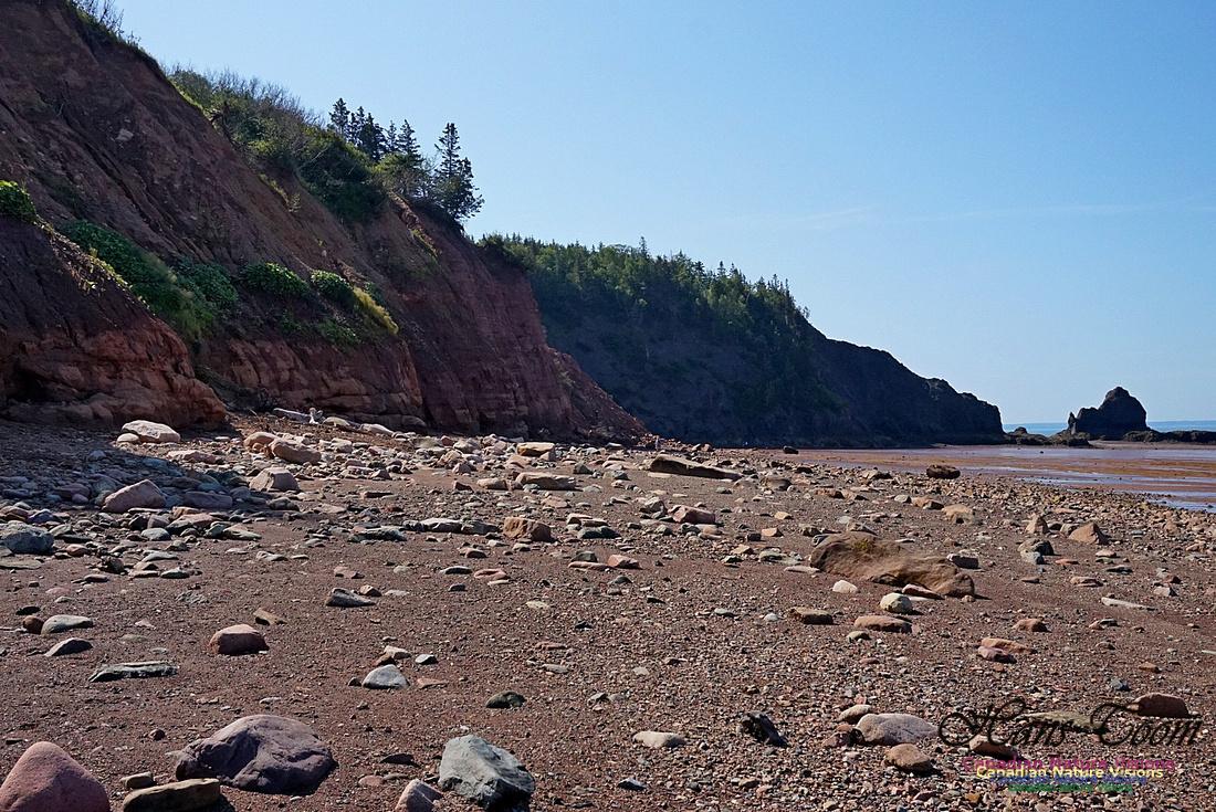 Five Islands Provincial Park 107
