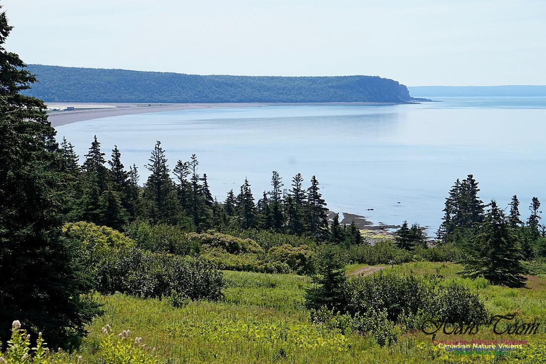 Fundy Ridge Trail 127