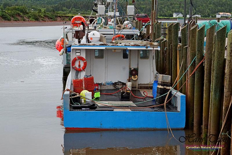 Dockside 220