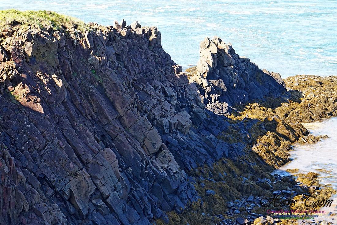 Cape d'Or Coastal Cliff 230