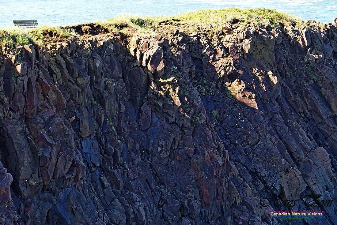 Cape d'Or Coastal Cliff 231