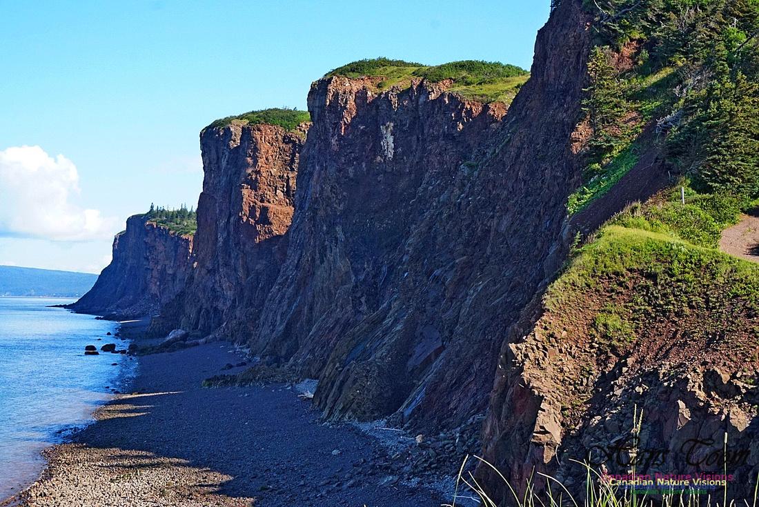 Cape d'Or Coastal Cliff 236