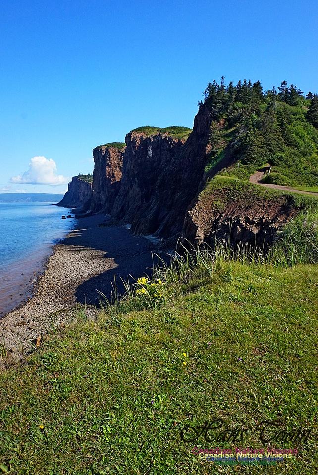 Cape d'Or Coastal Cliff 235