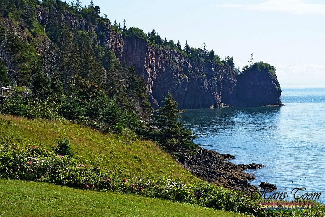 Cape d'Or Coastal Cliff 239