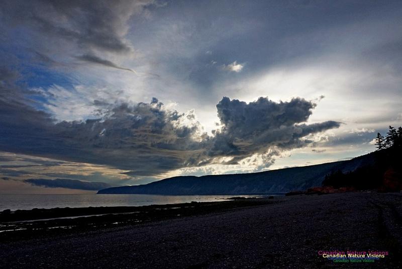 Active Clouds 233