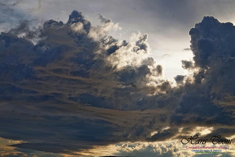 Active Clouds 232