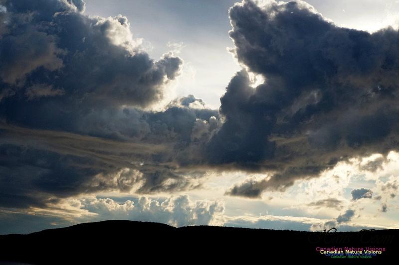 Active Clouds 235