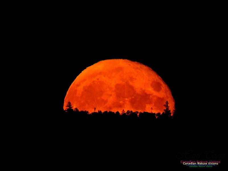 Moonrise 2401