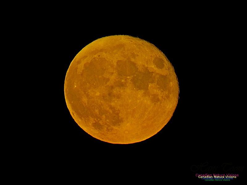 Moonrise 2505