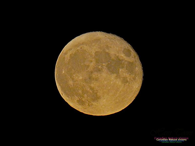 Moonrise 2506