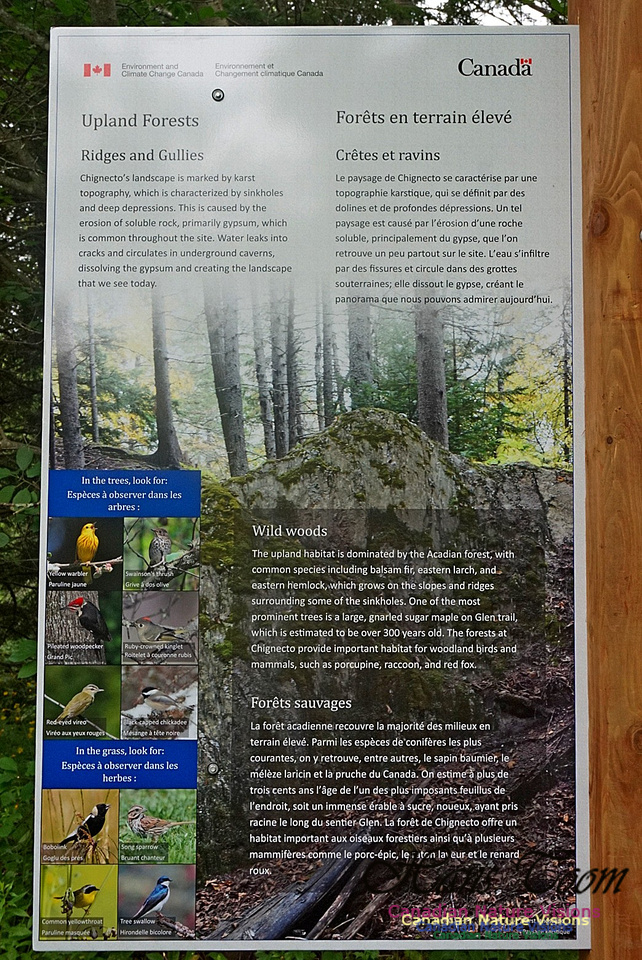 Upland Forests Sign 2701