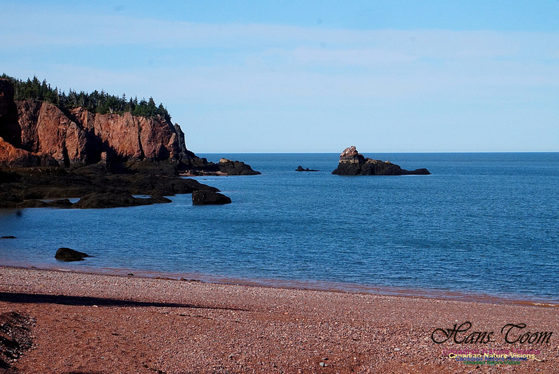 Anerson's Cove Hike 2911
