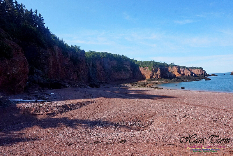Anerson's Cove Hike 2918