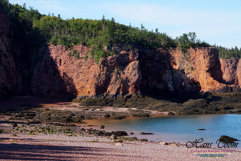 Anerson's Cove Hike 2916