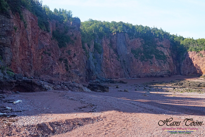Anerson's Cove Hike 2919