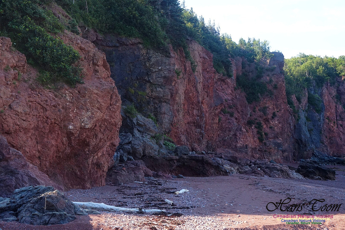 Anerson's Cove Hike 2920