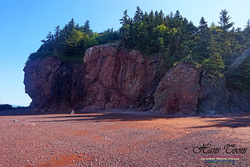 Anerson's Cove Hike 2923