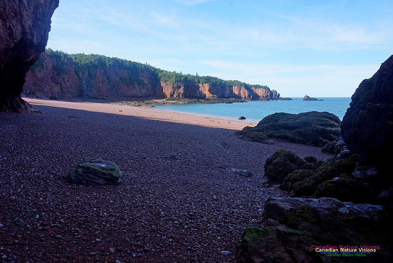 Anerson's Cove Hike 2932