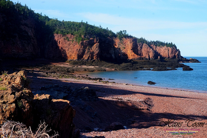 Anerson's Cove Hike 2907