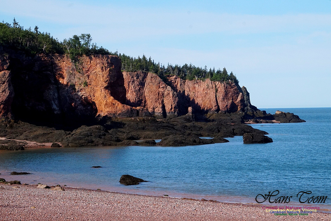 Anerson's Cove Hike 2917