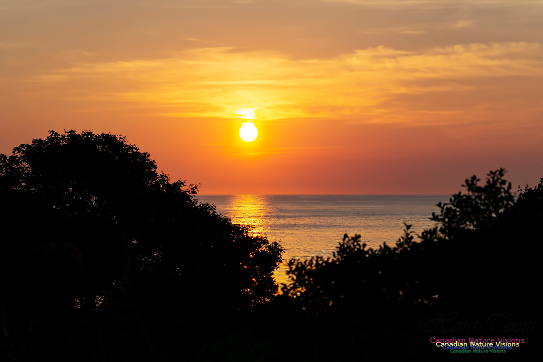 Sunrise 1002
