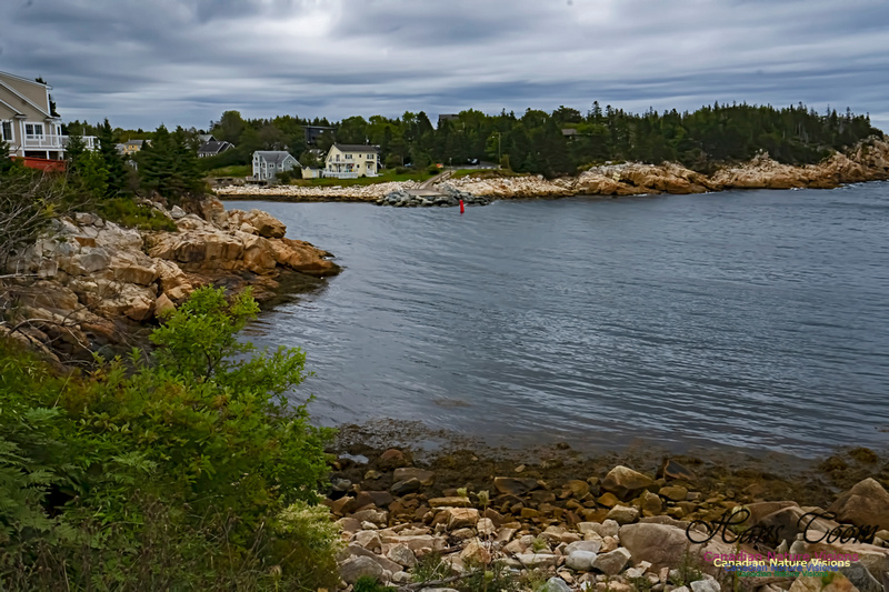 Herring Cove 100