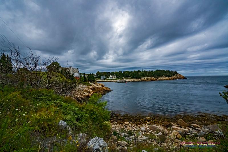Herring Cove 102