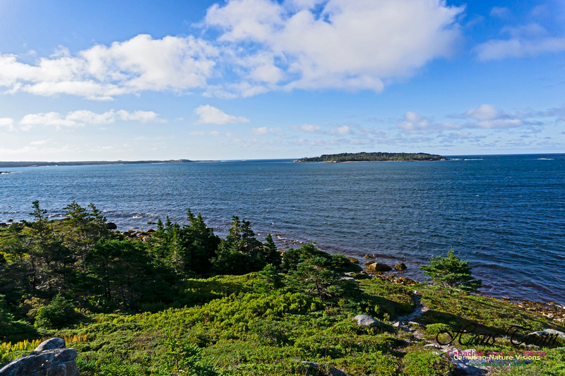 West Pennant Point 101