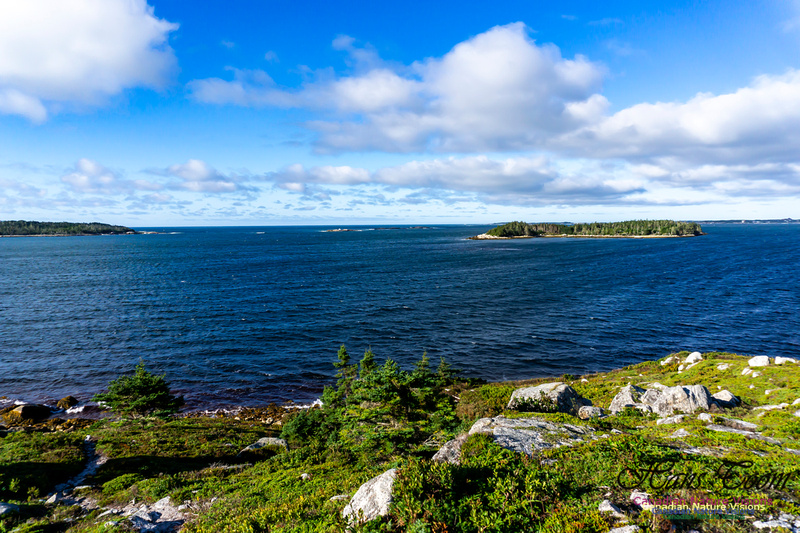 West Pennant Point 102