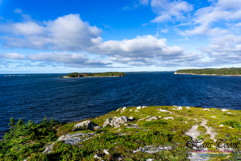West Pennant Point 103