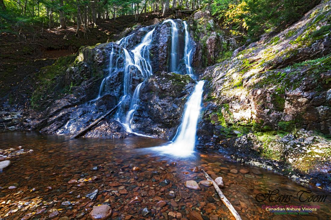 Wentworth Falls 109