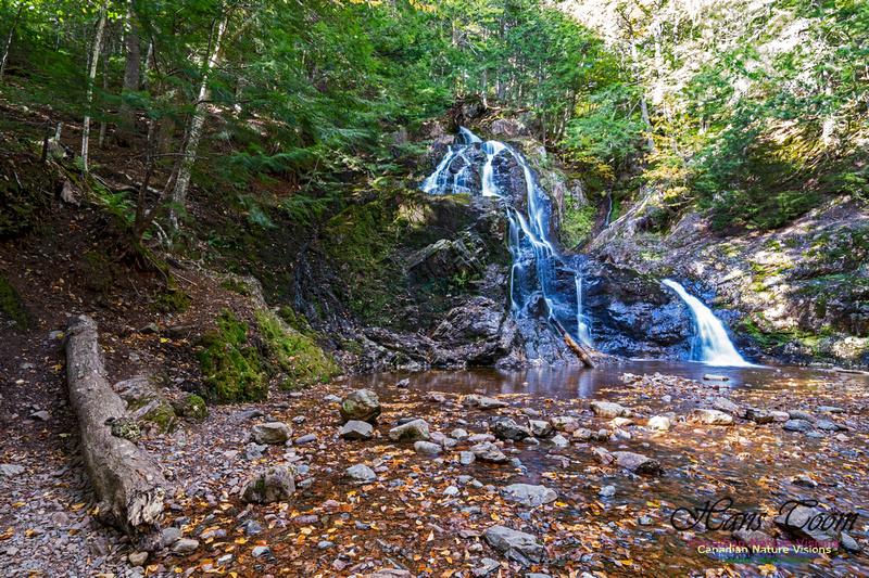 Wentworth Falls 111