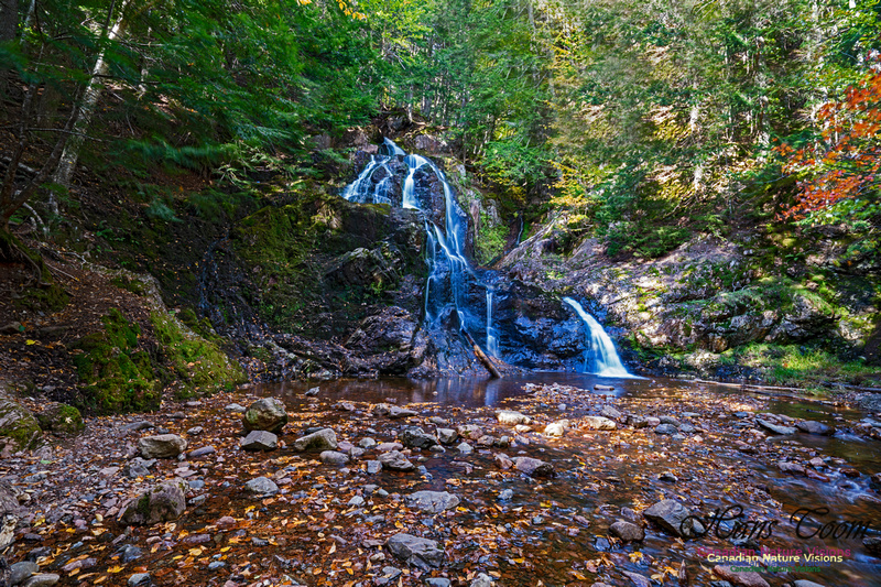 Wentworth Falls 112