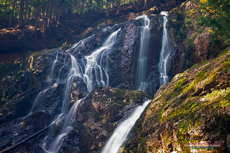 Wentworth Falls 103