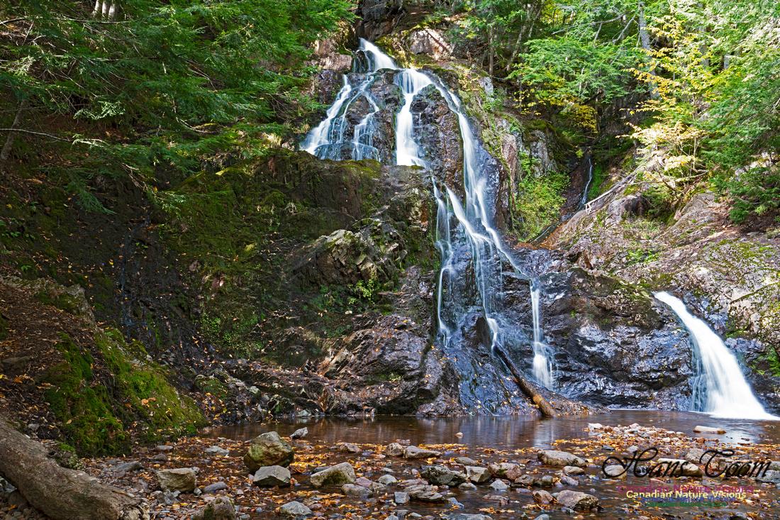 Wentworth Falls 101