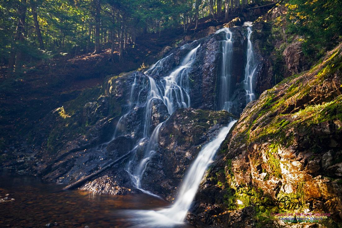 Wentworth Falls 104
